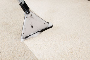 We're proud of our safe carpeting cleaning tools and equipment. We're proud of our gentle yet powerful carpet cleaning products as well.