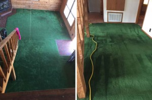 Carpet-3